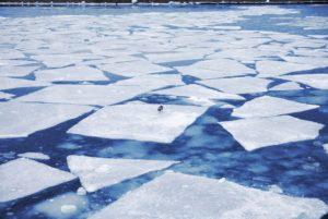 ice_floe